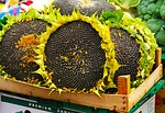sunflower, seeds, market