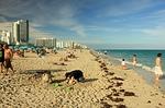 miami, beach, usa