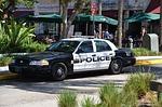 police, police car, auto