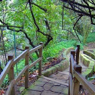 Bogotá Botanical Garden, colombia , bogota