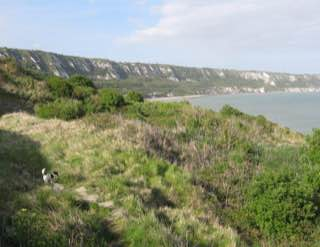 East Cliff and Warren Country Park, uk , canterbury