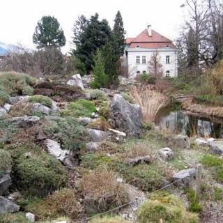 Botanical Garden of the University of Innsbruck, austria , centraltyrol