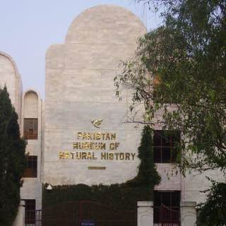 Pakistan Museum of Natural History, pakistan , islamabad