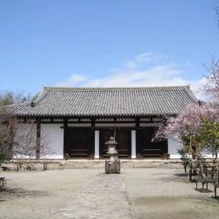 Shin-Yakushi-ji, japan , kyoto
