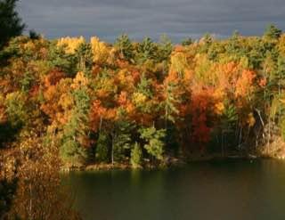 Gatineau Park, canada , ottawa