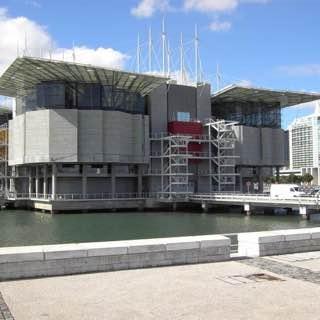 Lisbon Oceanarium, portugal , sintra