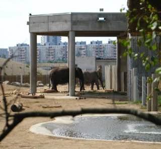 Tallinn Zoo, estonia , tallinn