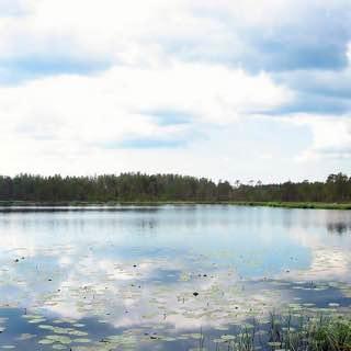 Kurjenrahka National Park, finland , turku