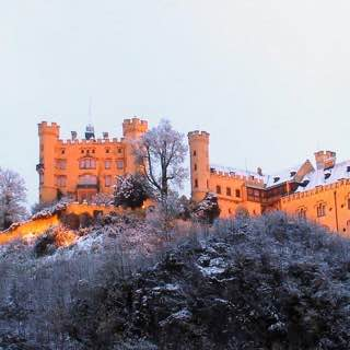 Hohenschwangau Castle, austria , tyrolwest