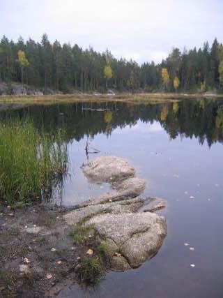 Nuuksio National Park, finland , vantaa