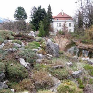 Botanical Garden of the University of Innsbruck, austria , zillertal