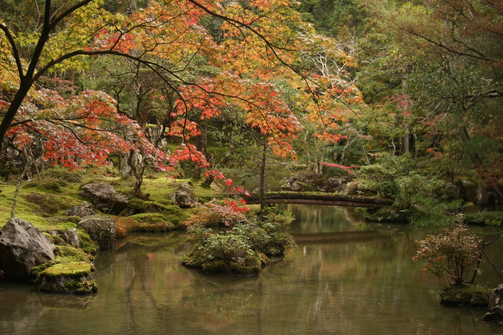 西芳寺 的形象. japan temple moss kyoto saihoji kokedera