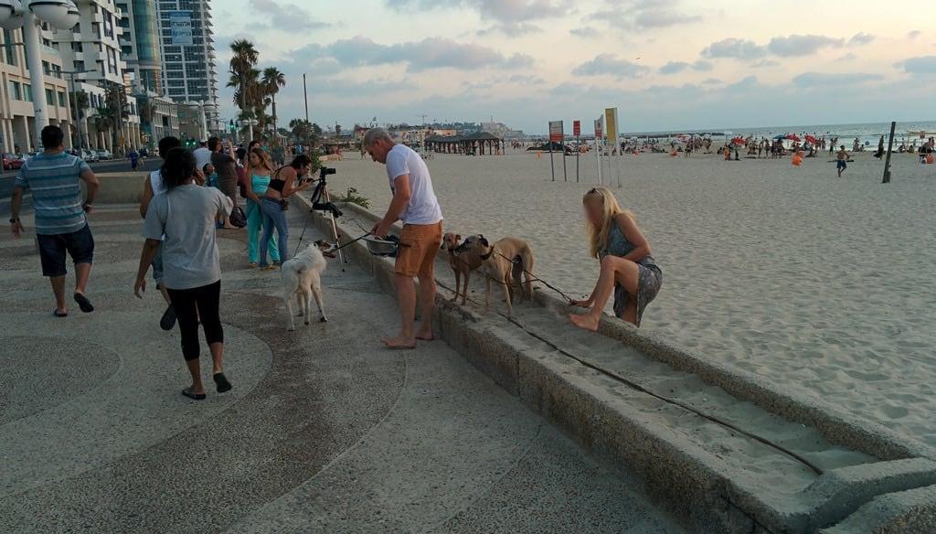 Geula Beach (חוף גאולה) Geula Beach közelében Tel Aviv képe. israel