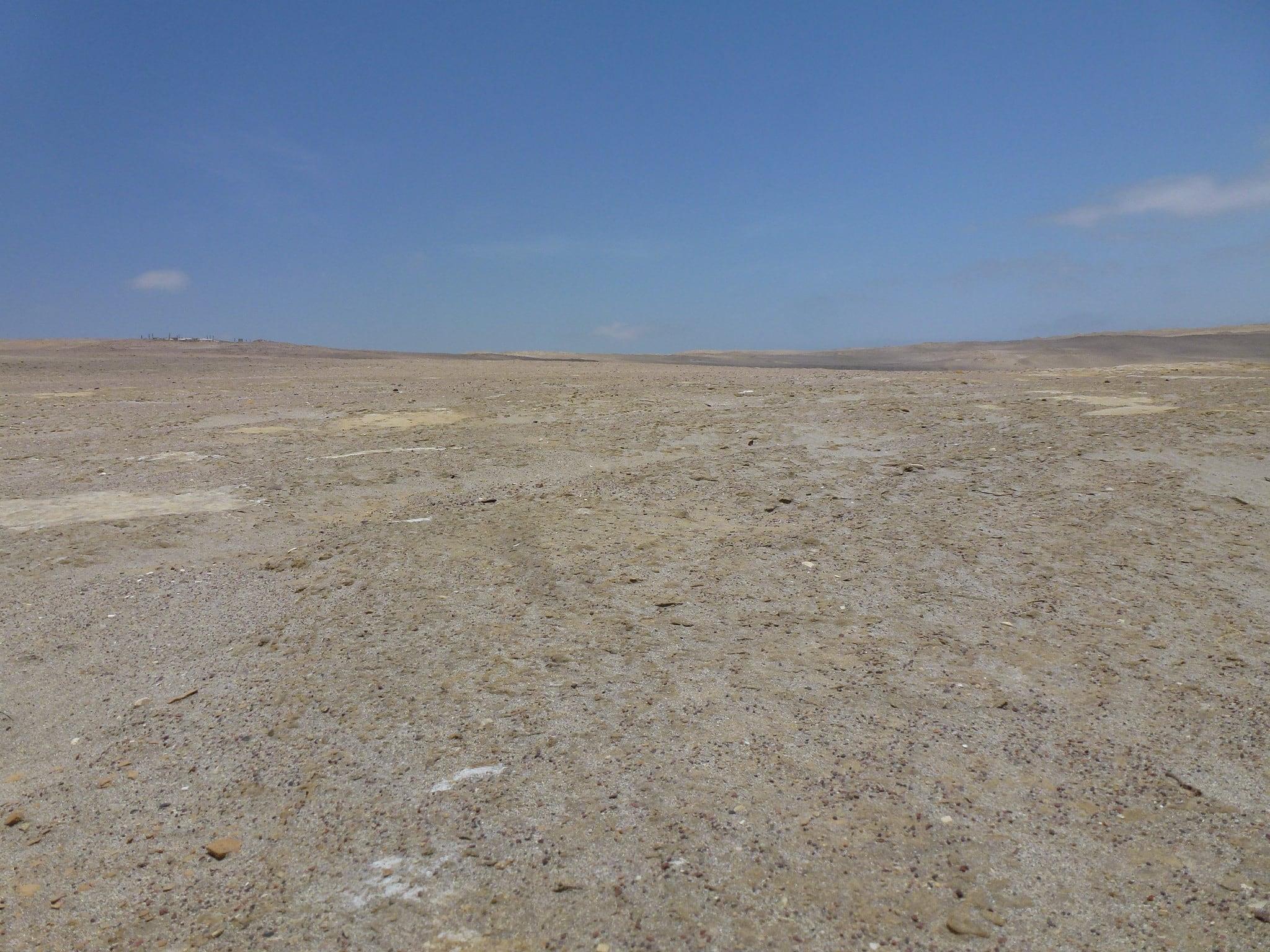 Image of De Paracas. peru paracas reservanacional