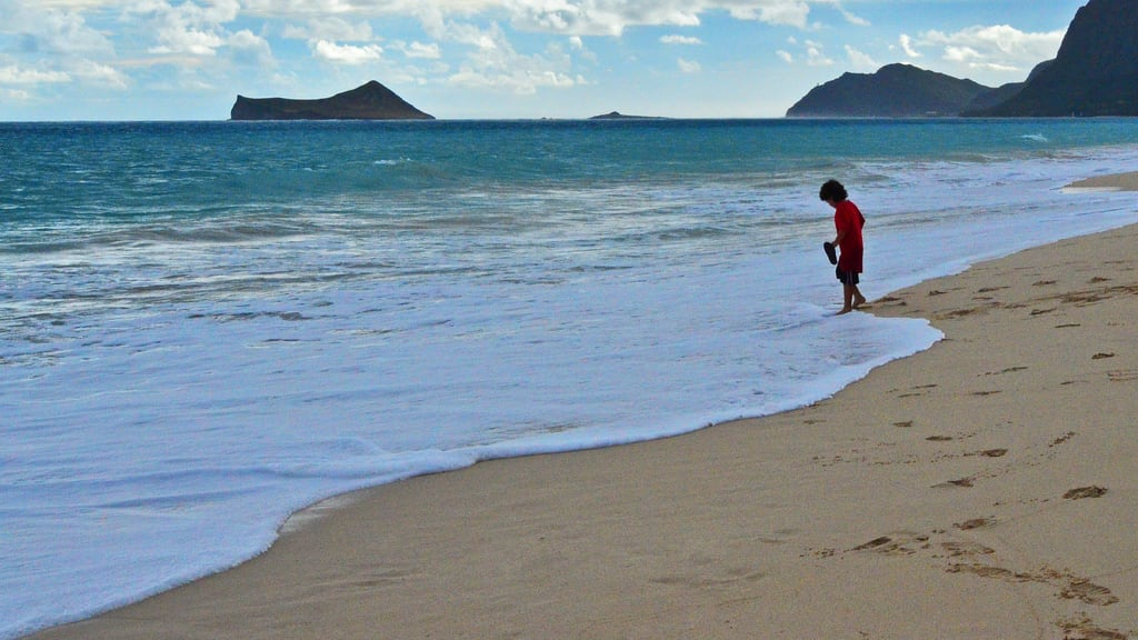 Waimanalo Bay State Recreation Area 海滩与 839 米的长度 的形象. ocean blue boy sea vacation rabbit beach water fun island hawaii kid sand alone play oahu wave foam hi lonely edmund garman wamanalo d7000