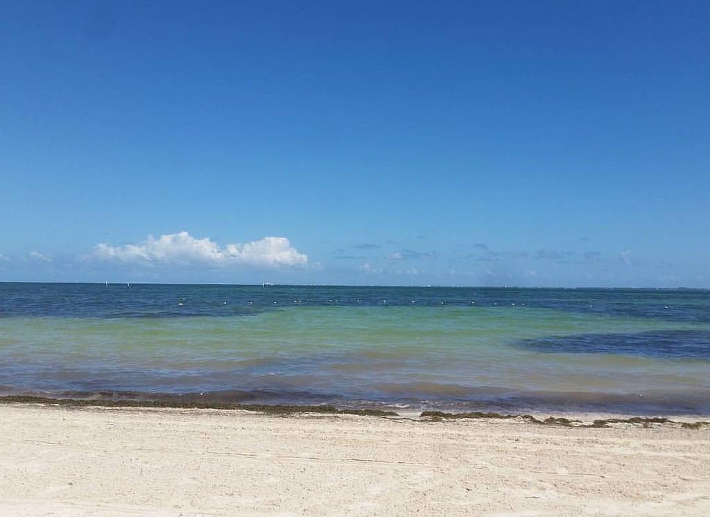 תמונה של Playa Las Perlas. instagramapp square squareformat iphoneography uploaded:by=instagram