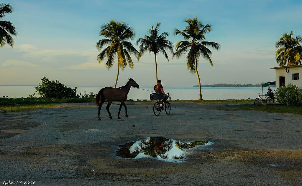 Immagine di Spiaggia con una lunghezza di 1097 metri. cuba cuba2018 playalarga bahíadecochinos ggl1 gaby1 gaby xovesphoto sonydscrx10iii sonyrx10iii rx10iii rx10m3 paisajes landscape