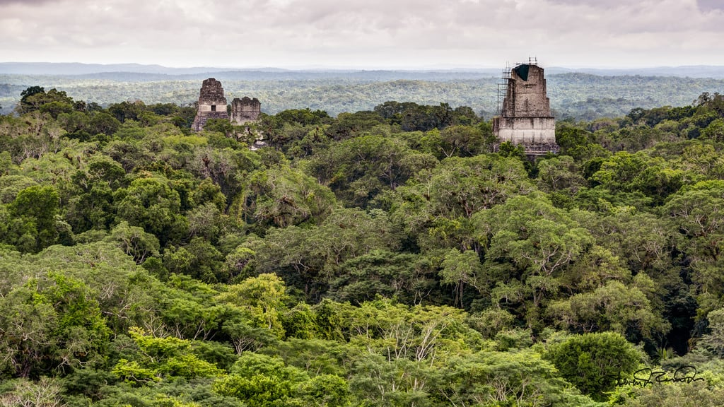 Kuva Temple IV. cstevendosremedios tikal petén guatemala gt