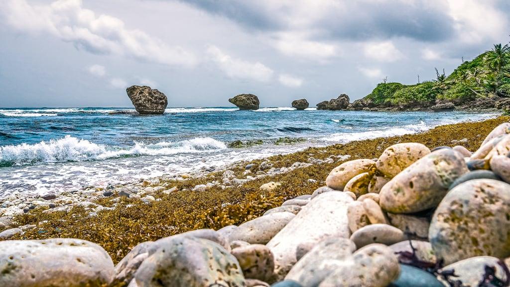 Bild av Bathsheba Stranden med en längd på 477 meter. ominous stormy grey cloud rain water beach coral pebble rock seaweed formation monolith bathsheba barbados coast carribean overcast dramatic artistic