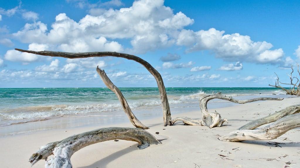 Immagine di Cayo Jutías Spiaggia con una lunghezza di 1445 metri. pinardelrío cuba ro016b landscape seascape ccby40