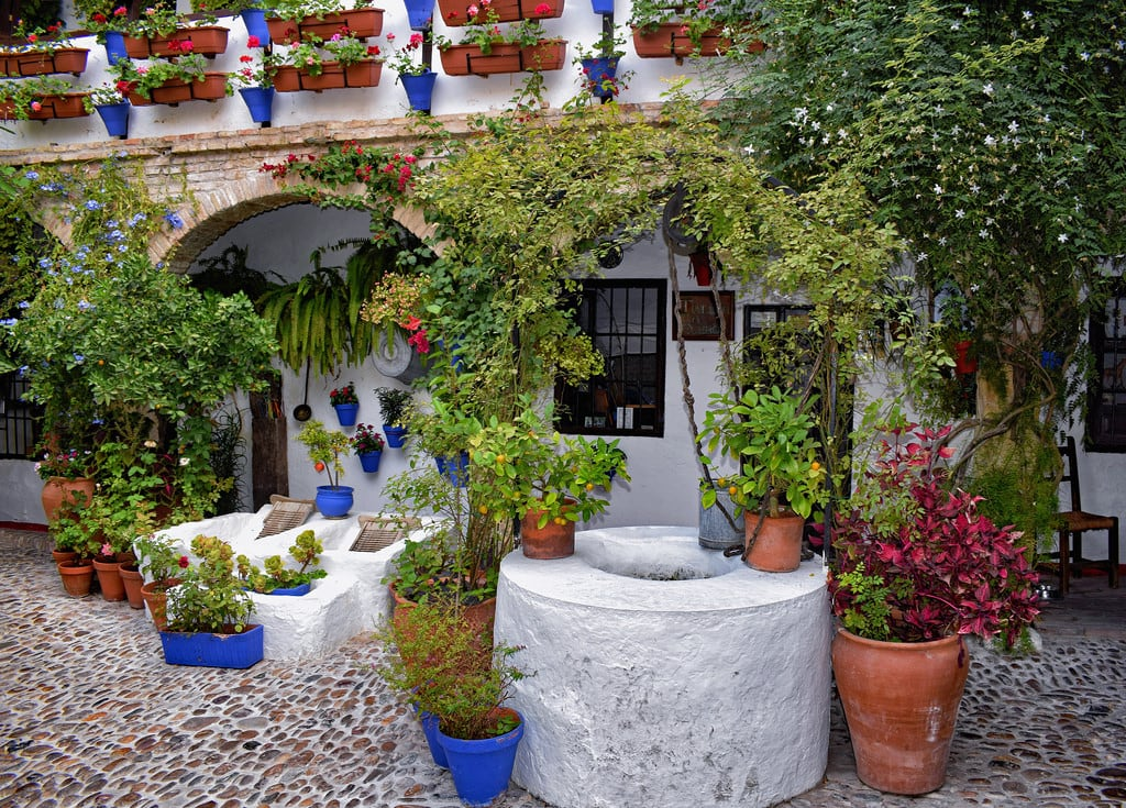 Attēls no historic centre. patio courtyard plants flowers foliage stone cobblestones buildings architecture houses whitehouses historictowns historictowncentres cordoba andalucia spain travel patiocordobes