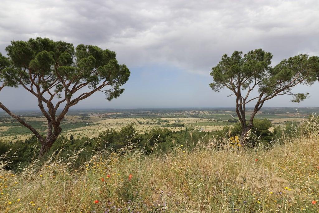 Bild av Castel del Monte. italy puglia casteldelmonte