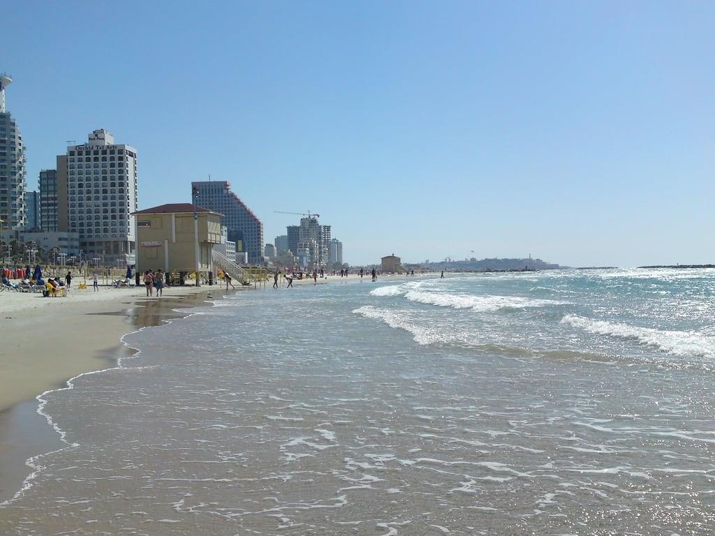 תמונה של חוף פרישמן.
