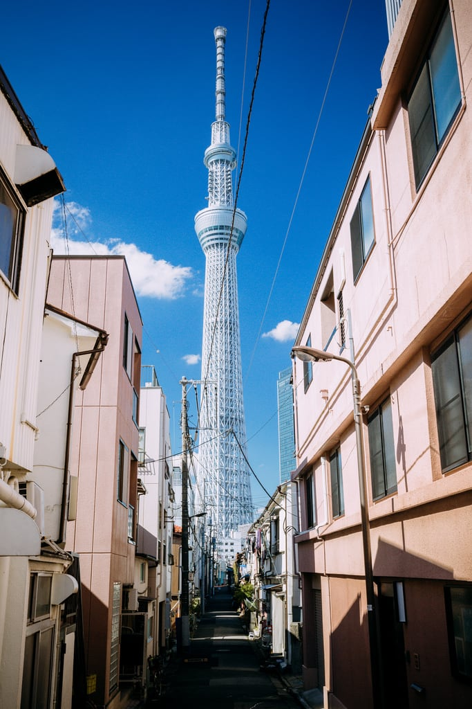 Bild von Tokyo Skytree. tokyo spring skytree tokyoskytree sky tree blue white sumida landmark kanto japan 東京 スカイツリー 東京スカイツリー スカイ ツリー 墨田 墨田区 東武 テレビ タワー tower 関東 日本 アジア travel asia 戶外 red flower plant nature skyscraper building canon eos 5d 5d3 architecture skyline day light daylight asian downtown trip tour landscape hdr city urban metropolis metropolitan reflection scape bleu sunshine shine sunny people capture nice azure pink 2470mm japon 35mm bright street shadow photography color life