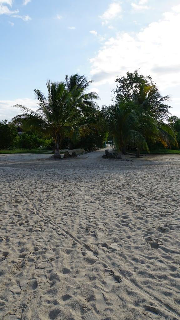 Immagine di Spiaggia con una lunghezza di 982 metri. 2014 27mm e18200mmf3563ossle focallength27mm focallengthin35mmformat27mm ilce6000 iso100 sony sonyilce6000 sonyilce6000e18200mmf3563ossle