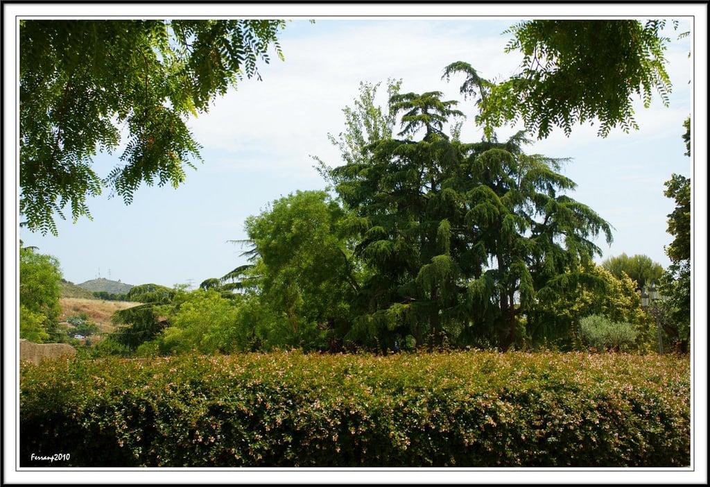 Εικόνα από Parc del Laberint d'Horta. barcelona garden jardín horta laberinto