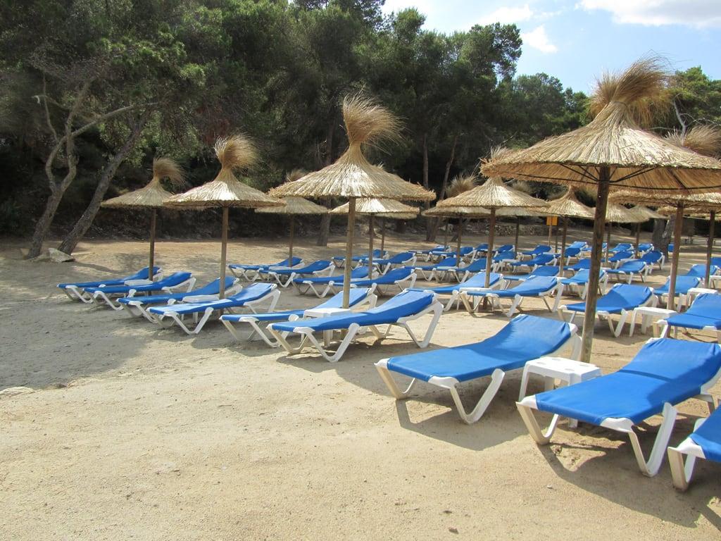 """Hình ảnh của Cala de """"sa Nostra Dona"""" o """"Bella Dona"""". beach mallorca calafalcó"""