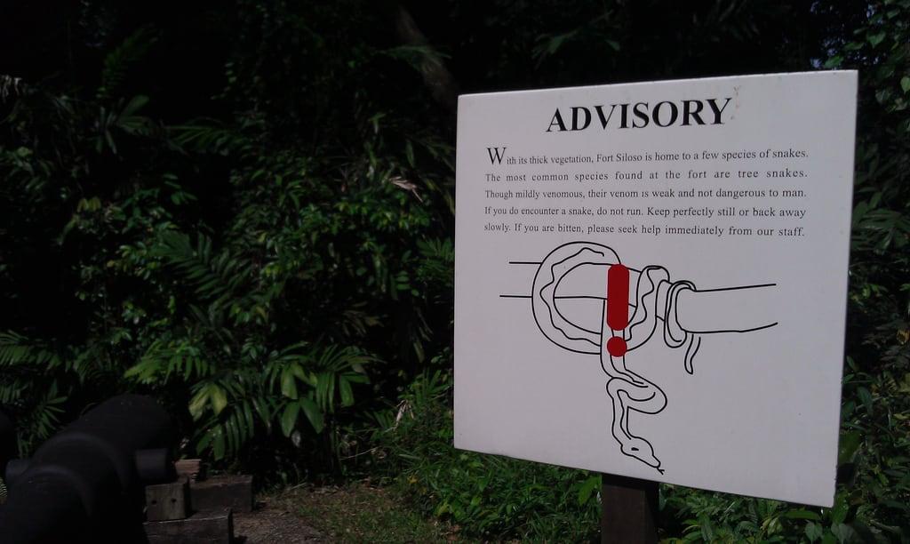 Image of Fort Siloso. tree sign warning singapore snake sentosa fortsiloso