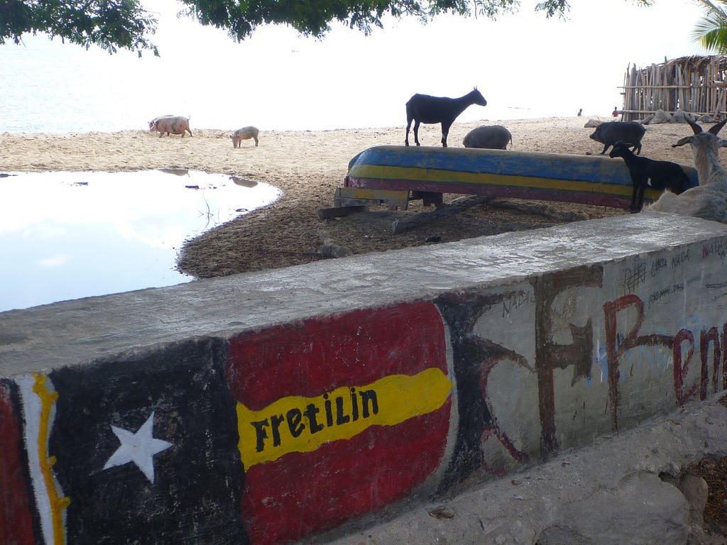 Bilde av Praia. beach island goat easttimor timorleste fretilin