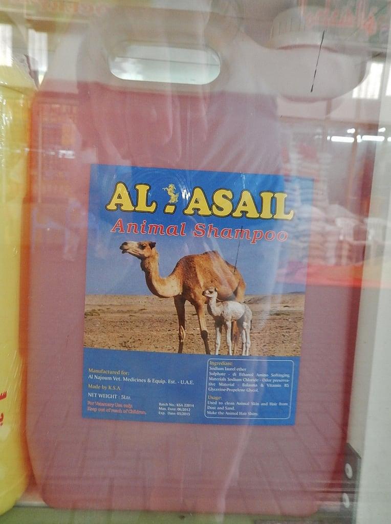 Bild von Camel Market Al Ain. display market shampoo camel alain