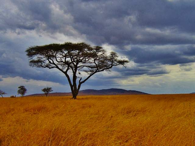 Best places to visit in Tanzanie