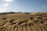 Zdjęcie:   Hiszpania  Wyspy Kanaryjskie  Gran Canaria  Puerto Rico  (wydmy, gran canaria, wyspy kanaryjskie)