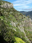 Zdjęcie:   Hiszpania  Wyspy Kanaryjskie  Teneryfa  Playa Paraiso  (wyspy kanaryjskie, krajobraz, charakter)